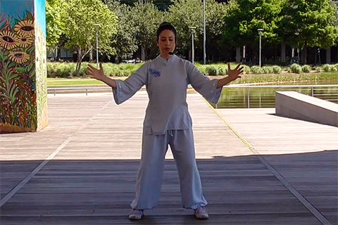 Tai Chi at Discovery Green Online